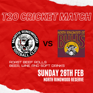 T20 Cricket Match V North Ringwood Cricket Club